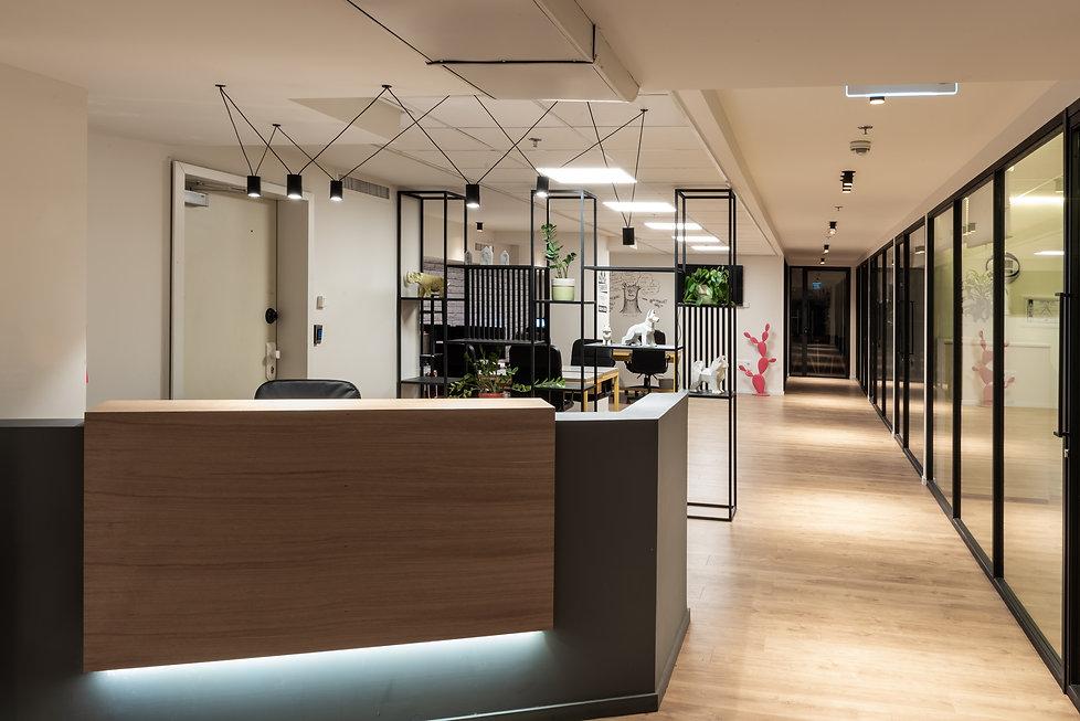 אלינור גוילי עיצוב משרדי ictbit דלפק קבל