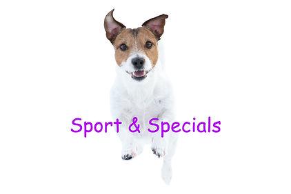 sport & specials.jpg