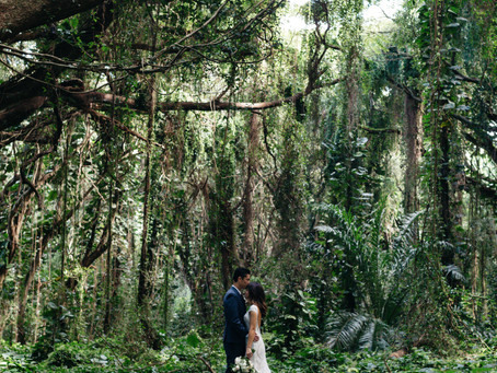 Maui Jungle Elopement and our sacred Honolua Bay