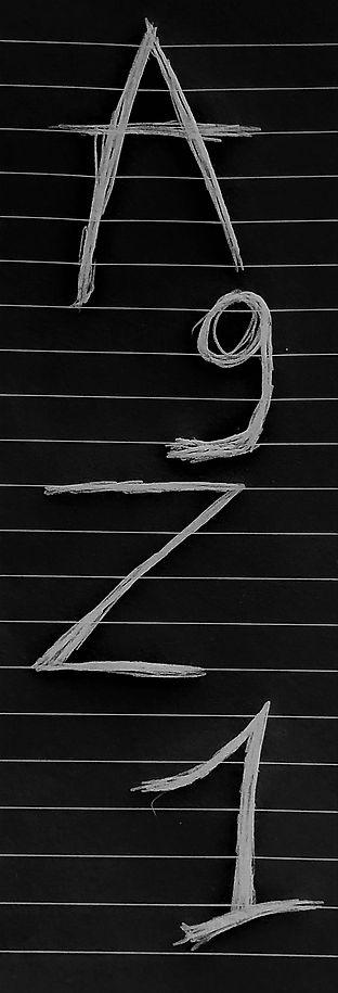 A9Z1.jpg