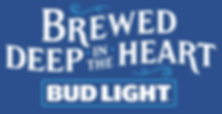 BDL_BDITH_logo_bluebackground.png