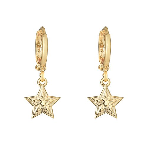 Sparkling star - earrings in gold/silver