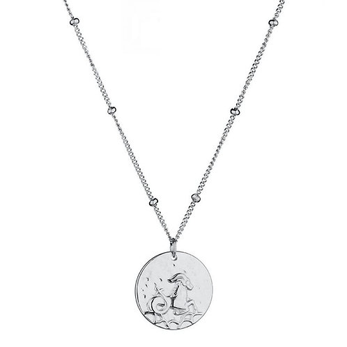 STEENBOK - sterrenbeeldketting in RVS zilver (capricorn zodiacsign)