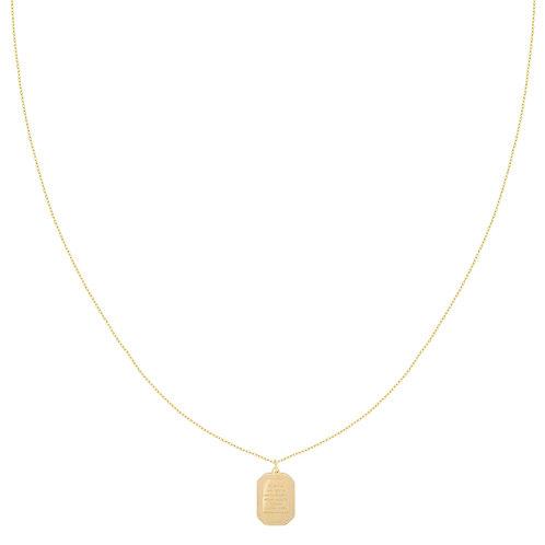 Wisdom charm - ketting in RVS zilver/goud