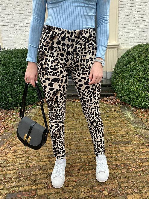 DANGEROUS SWEETHEART - leopard pantalon in off-white