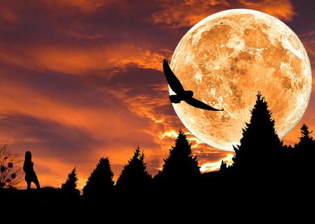星Club學堂: 月亮真的代表我的心?