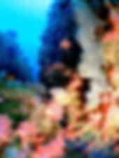 futatsune1.jpg