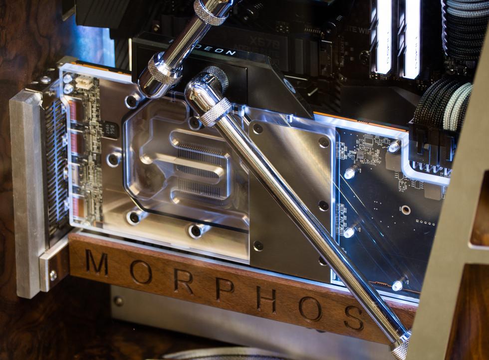 Morphosis 13