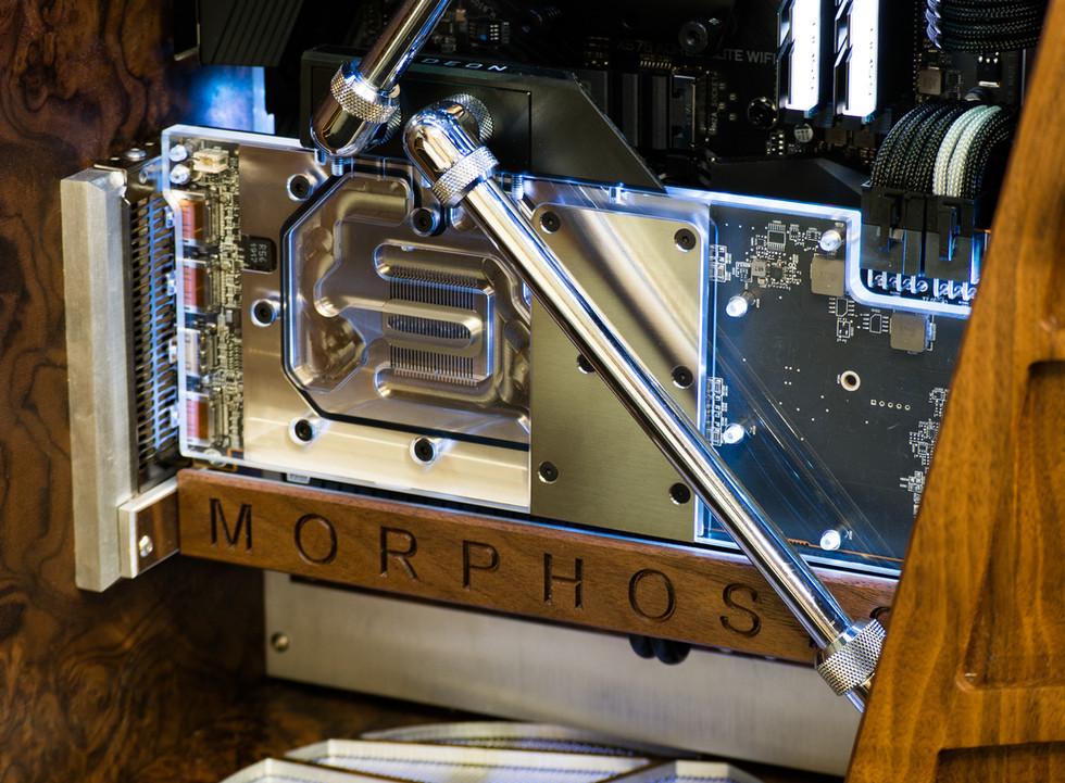 Morphosis 16