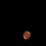 Logo Nuss_rund_final.png