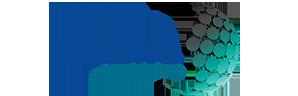logo_digiserve.png