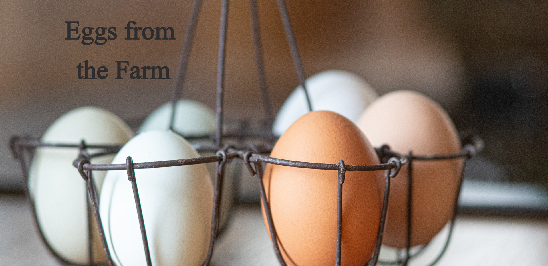 Eggs from the Farm