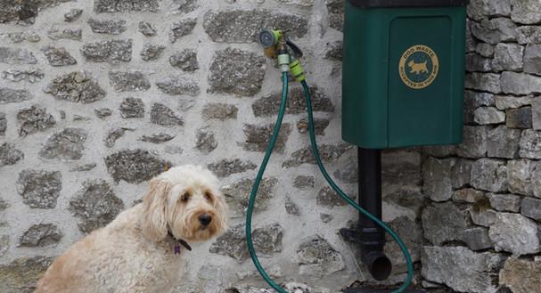 Dog Friendly Property