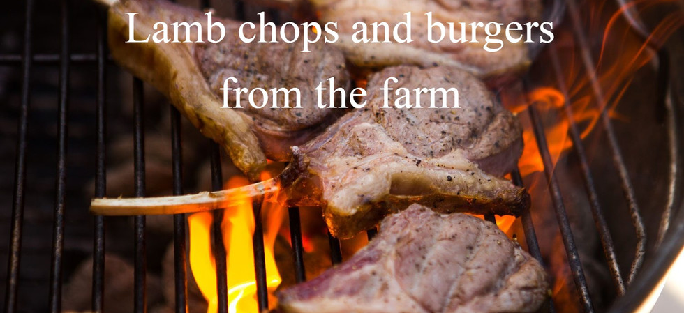 Lamb chops and burgers from the farm.