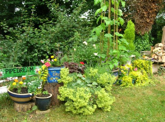 garden_competition_2013_197_20170303_142