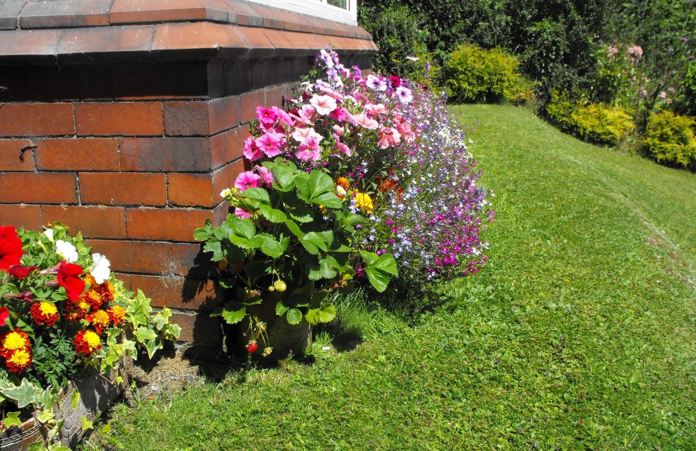 garden_competition_2014_143_20170303_143