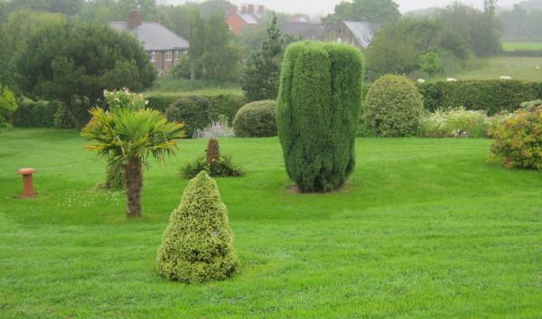 garden_competition_2012_45_20170303_1951