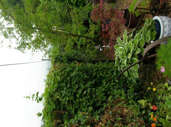 garden_competition_2013_190_20170303_186