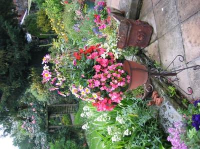 garden_competition_2008_46_20170303_1419