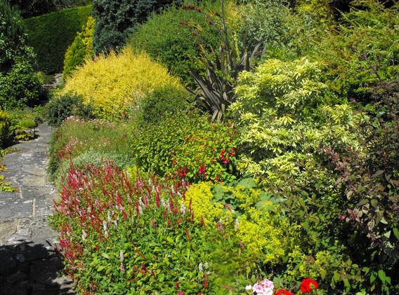 garden_competition_2014_128_20170303_208