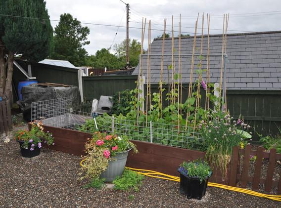 garden_competition_2015_101_20170304_194