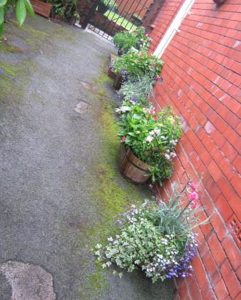 garden_competition_2012_51_20170303_2057