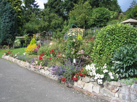 garden_competition_2009_36_20170303_1195