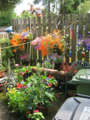 garden_competition_2010_69_20170303_1632