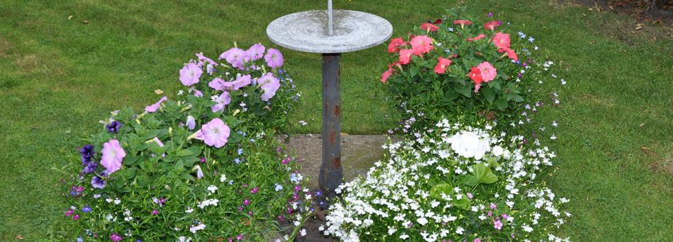 garden_competition_2016_79_20170306_1510
