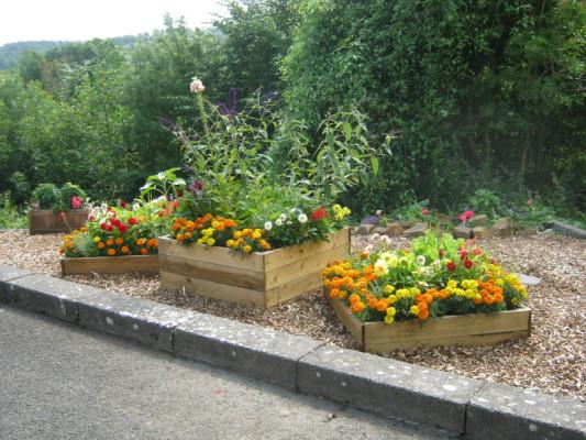 garden_competition_2010_42_20170303_1890