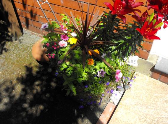 garden_competition_2014_145_20170303_151