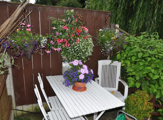 garden_competition_2016_76_20170306_2069