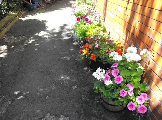 garden_competition_2014_144_20170303_127