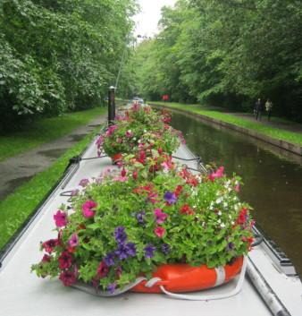 garden_competition_2012_22_20170303_1699