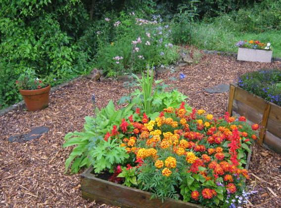 garden_competition_2012_32_20170303_2062
