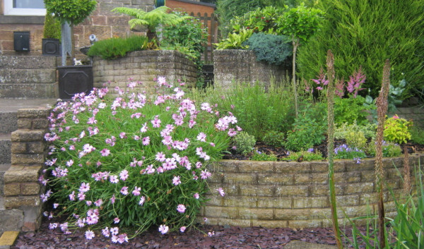 garden_competition_2012_53_20170303_1049