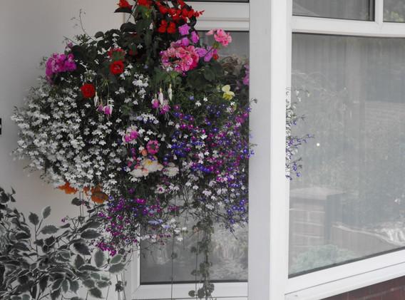 garden_competition_2014_152_20170303_112