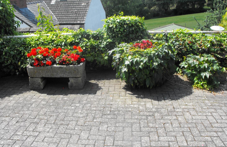 garden_competition_2014_119_20170303_130