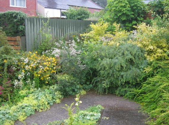 garden_competition_2012_60_20170303_1399