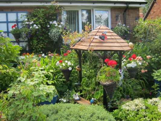 garden_competition_2010_59_20170303_1780