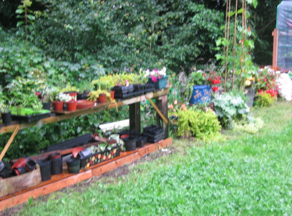 garden_competition_2012_20_20170303_1318