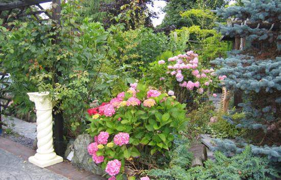 garden_competition_2009_21_20170303_1917