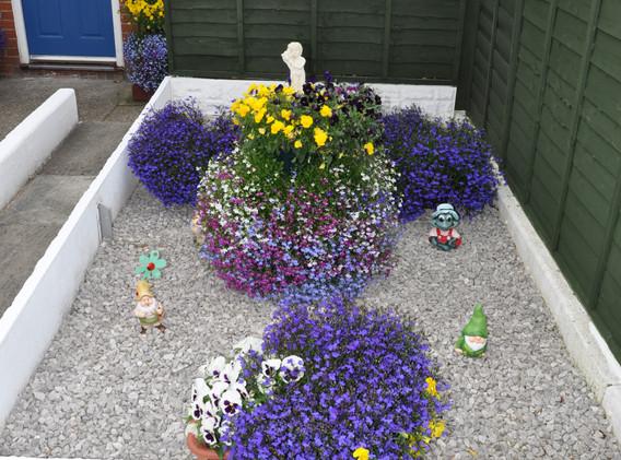 garden_competition_2016_95_20170306_1412