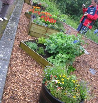 garden_competition_2012_30_20170303_1678