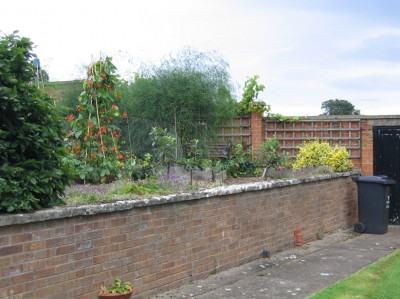 garden_competition_2008_56_20170303_1356