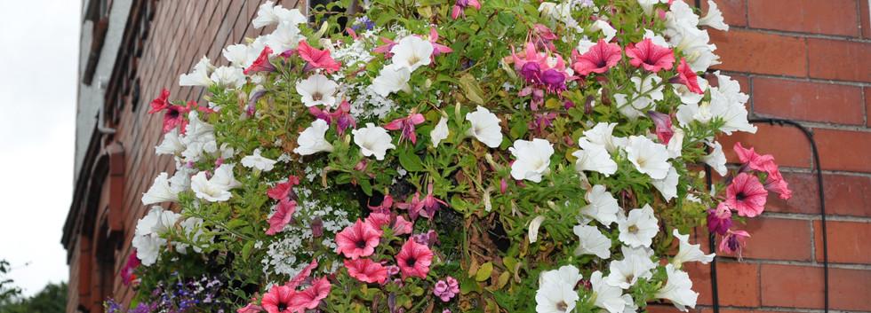 garden_competition_2016_99_20170306_1454