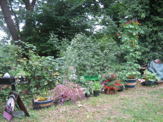 garden_competition_2010_45_20170303_2064