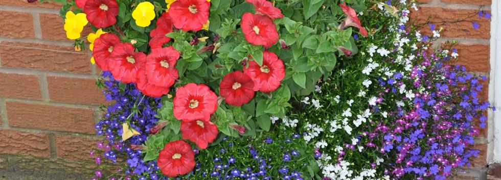 garden_competition_2016_97_20170306_1489