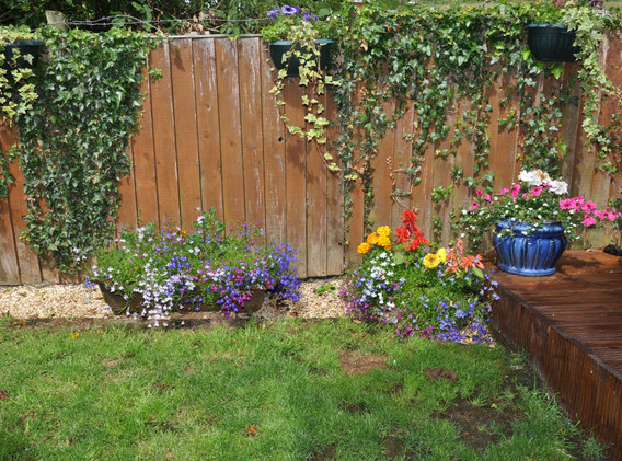 garden_competition_2015_88_20170305_1770