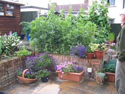 garden_competition_2008_25_20170303_1973